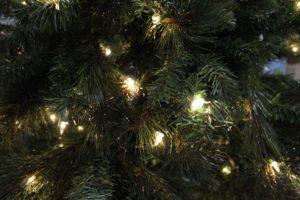 Holiday lights on tree