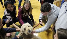 Therapy Dog Visit